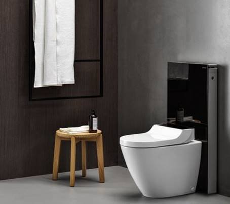 Geberit AquaClean Tuma Comfort Floor-Standing WC - Stainless Steel Brushed